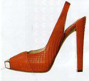 escarpins-dior