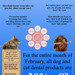 February is National Pet Dental Care Month!