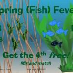 Spring fish sale!