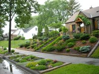 Great landscaping ideas for the front yard  Wilson Rose ...