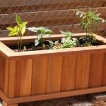 How To Make Wooden Planter Boxes Waterproof Wilson Rose Garden
