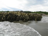 Hermit Island, Maine