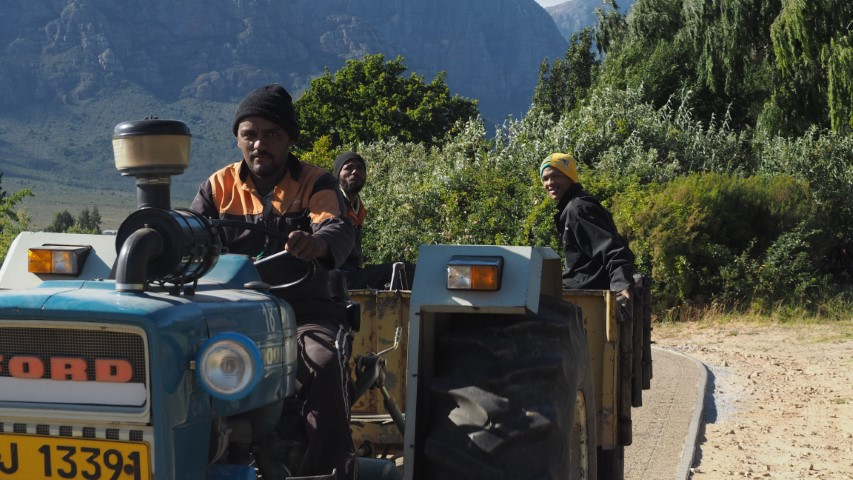 mannen op tractor