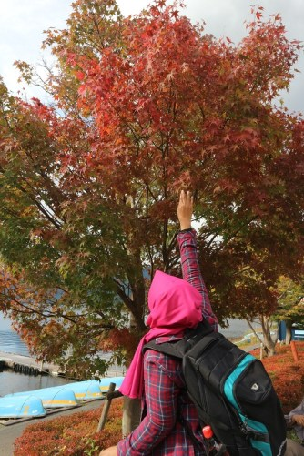 Trying to reach the most red maple leaf
