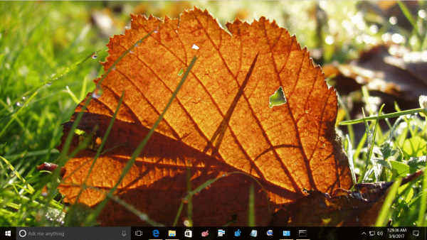 Fall Colors Desktop Wallpaper Download Autumn Leaves Theme For Windows 10 8 And 7