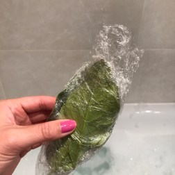 Defrosted Pomelo Leaves