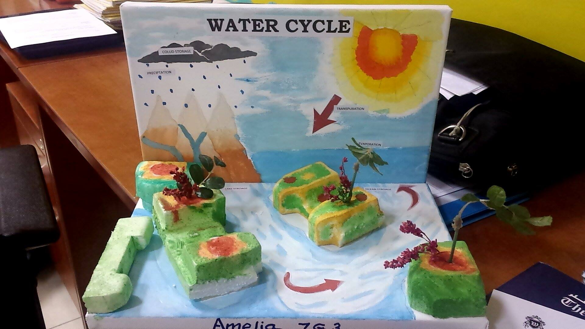 Science 3d Model Water Cycle