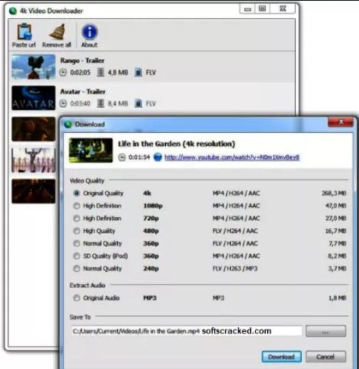 torrent.com video