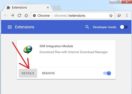 internet download manager license key