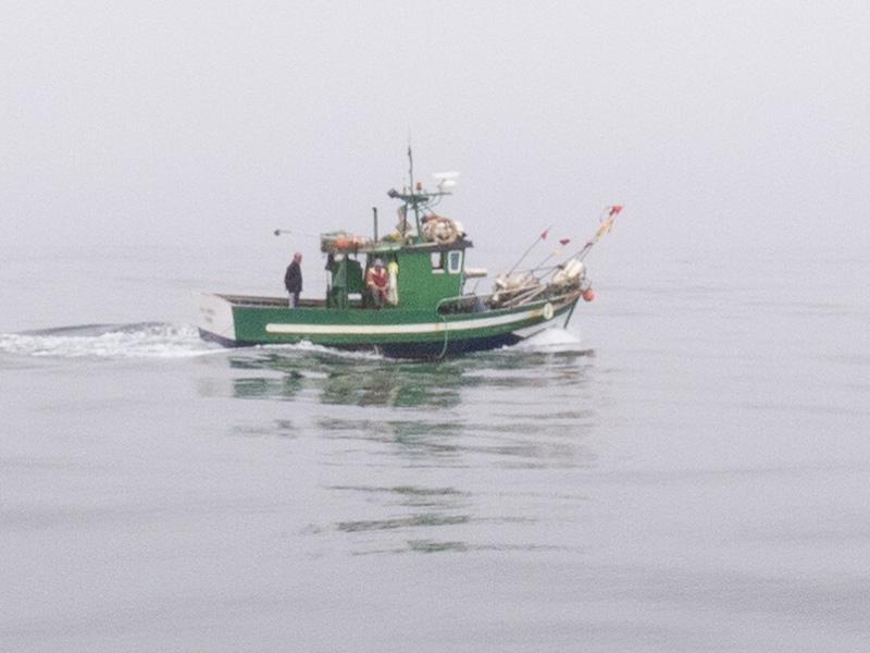Tretminen: und hier der dazugehörige Fischer