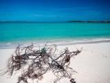 Long Cay – was macht man eigentlich den ganzen Tag auf den Bahamas?
