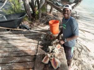 Die Bahamas Teil 2 der Artikelserie