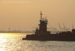 Bay Ridge anchorage