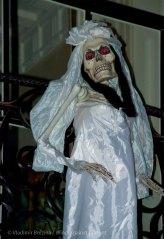 Halloween 2013 6
