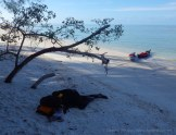 A brief nap on the beach