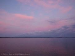 Dawn in Chokoloskee Bay
