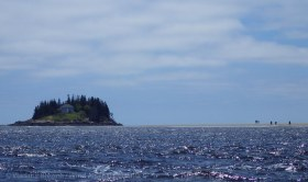 33. Wood Island, at the mouth of the Kennebec