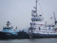 Tugboat Race 2014 26