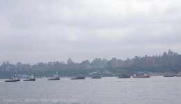 Tugboat Race 2014 8