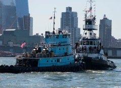 Tugboat Race 43