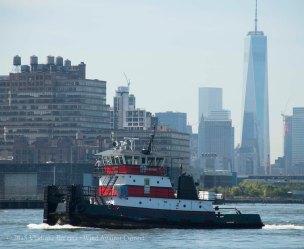 Tugboat Race 14