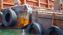 Gowanus Canal 2015 16