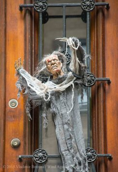 Halloween decorations 2015 6