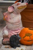 Halloween decorations 2015 19
