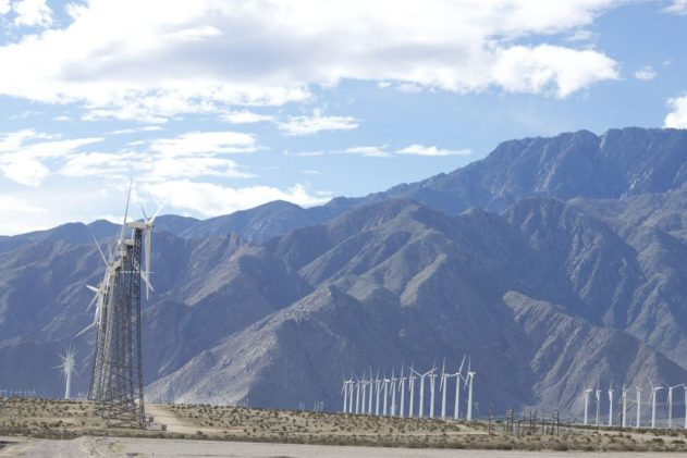Rows of wind turbines stand; dwarfed by Mount San Jacinto.