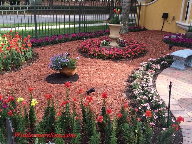 Amazing neighborhood yard (credit: Windermere Sun-Susan Sun Nunamaker)