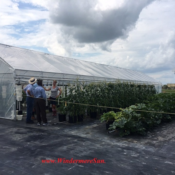 Bekemeyer Hydroponic Farm18 final