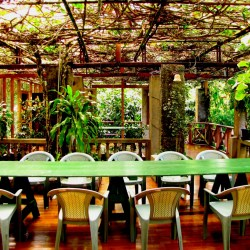 picnic-tropical-lunch-by john boyer