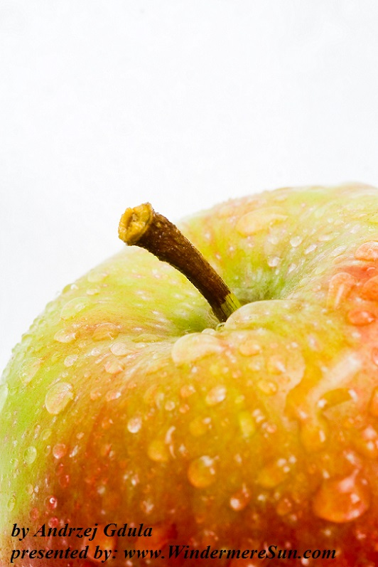 apple-1320863-freeimages-by-andrzej-gdula-final