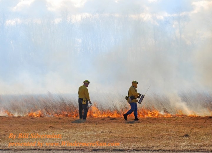 controlled-burn-4-1246279-freeimages-by-bill-silvermintz-final