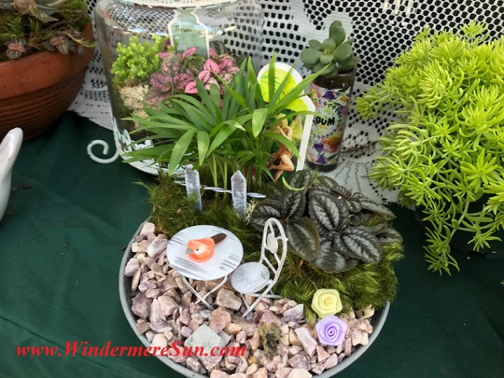 fairy, bird in a fairy planter final