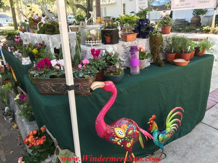 flamingo and rooster final