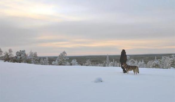 Nature trails around Rovaniemi