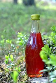 Spruce shoot syrup recipe. Wind from the North Check out the spruce shoot syrup ice cream and liqueur recipes as well!