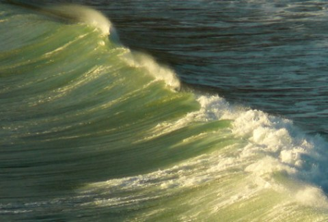 lime_green_wave_1