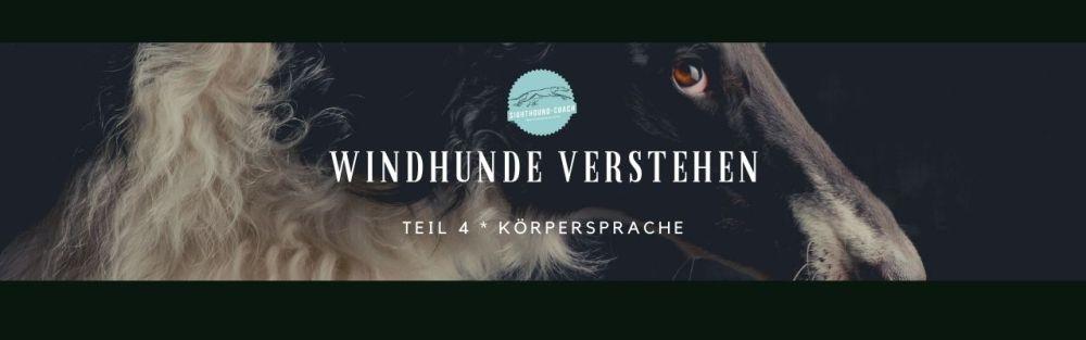 Windhunde verstehen Teil 4