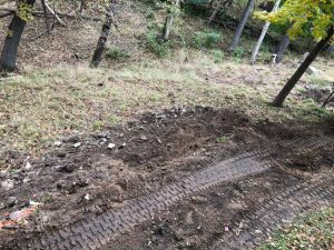 View of slope for new wall.