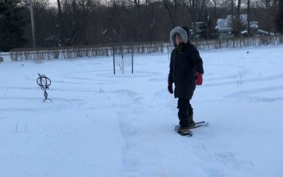 Polar Vortex Labyrinth Lessons