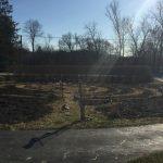 Burned labyrinth