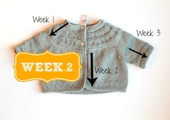 Seamless Yoked Baby Sweater knit along week 2 winding the skein