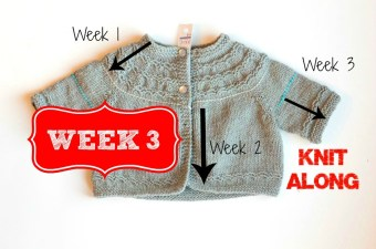 Knit-along week 3 Seamless Yoked Baby Sweater