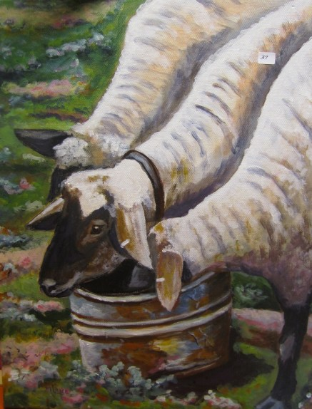 Windmore Millie Lane's Sheep No. 37