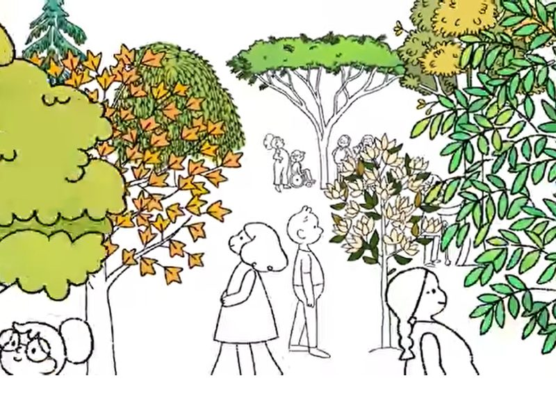 Celebrate Earth Day 2021 with this 'beau-tree-ful' Google Doodle, ,