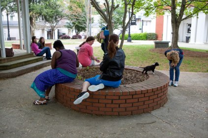 Brenau students take a break from their finals to play with puppies from the Hall County Animal Shelter.
