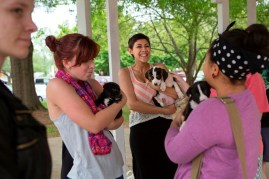 "From left, Brenau students McKenzie Stevens, Taylor Jackson and Corrinna Redford, all play with puppies under the gazebo on Brenau's Gainesville campus. The puppies were provided by the Hall County Animal Shelter as a stress relief during finals week. ""Nothing makes me happier than playing with a puppy after a stressful day,"" Stevens said."
