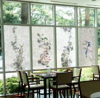Decorative Window Film, Window Film for Your Home, Privacy